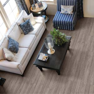 Vinyl Plank Flooring Coretec Plus Hd Xl Floors